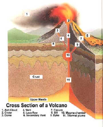 volcanoes essay papers Home » volcano models » paper and cardboard printable paper directions: first, get a pair of scissors and some glue or tape then.